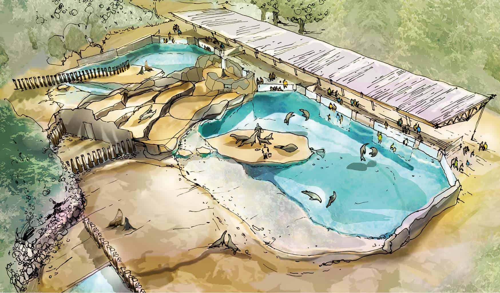 Entwurf aus der Projektstudie zum Neubau der Robbenanlage im Zoo Rostock