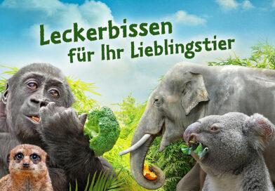"""Valentinstag im Lockdown – mit Zoo-Gutschein & """"Eukalyptus-Strauß"""""""
